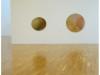 """""""Skin ; An Artistic Atlas"""", Royal Hibernian Academy, Dublin, 2013"""