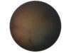 Body 06.26.17, oil on tondo, 54 inch diameter, 2017