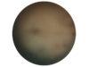 Body 08.08.17, oil on tondo, 36 inch diameter, 2017